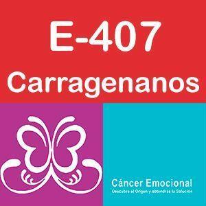 E-407 carragenanos