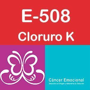 E-508 cloruro potásico