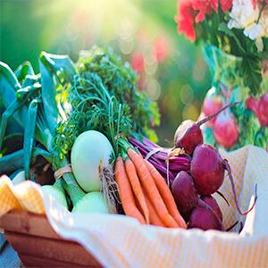 cura del lupus alimentos naturales