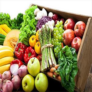 Derrotando al Lupus, Alimentación saludable