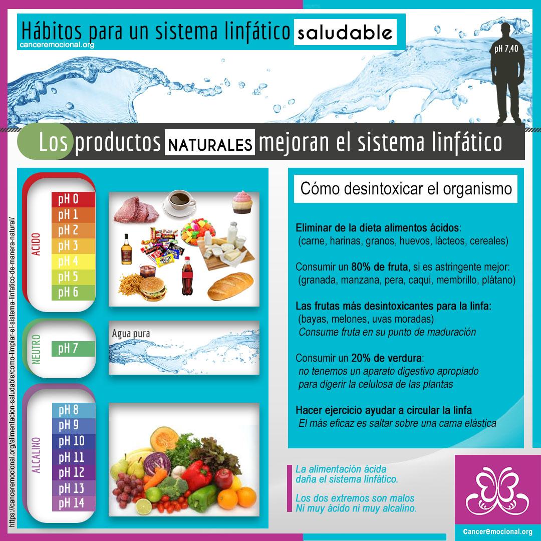 Infográfia hábitos para un sistema linfático saludable