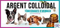 Argent colloïdal pour animaux de compagnie, témoignages
